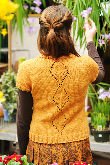 Knitty : Ashley Knowlton: Author and Designer: New Knitty, New Pattern!