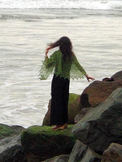 Laminaria - 木棉花 - 雨茫茫,雾茫茫,盼望花开,花已落……