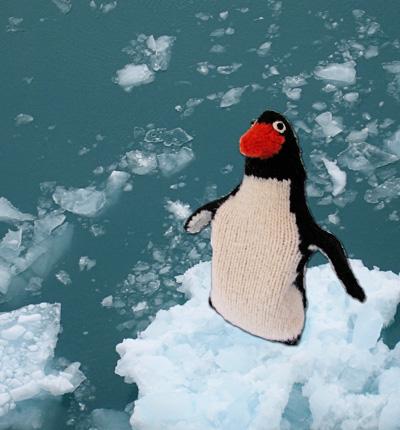 Mr Popper\'s Penguin water bottle cover - Knitty: Winter 2009